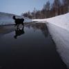 雪解け水に映る空
