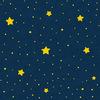 古代日本における「星」|国政に関わる天文学