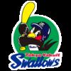 【2021】東京ヤクルトスワローズ 選手使用メーカー一覧(グラブ、グローブ、バット、スパイク、道具) プロ野球セ・リーグ