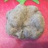 丹波篠山の「山の芋」 ねっとり感がクセになる栄養豊富な旬の味覚
