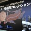 【ミティラー美術館コレクション展   インドコスモロジーアート 自然と共生の世界】