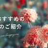 秋におすすめのお花