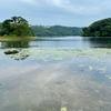 多鯰ヶ池(鳥取県鳥取)