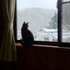 雪にまつわるエトセトラ