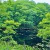 矢ノ原沼(福島県昭和)
