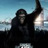 映画『猿の惑星:創世記』の感想