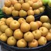 癒しのフルーツ!秋を感じる果物ベスト3