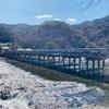 【オススメ癒し観光スポット】京都・嵐山の穴場紹介
