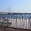 (2017.5.20)リニューアルな自転車と荒川散歩!