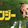 Netflixオリジナル作品ジャンル別おすすめリスト【2018年版】(前編)
