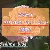 地植えして3カ月! ついにアジサイのプリンセス・シャーロットが咲いた~!!