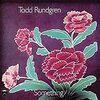 【自分に影響を与えた10枚 1970年代編】 Day 4: Something/Anything? / Todd Rundgren