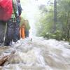 Heavy rains leave climbers  stranded in Yakushima(屋久島、豪雨で足止め。。。)