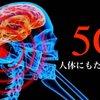 【まもなく到来】5Gが人体にもたらす影響〜5Gのデメリットとメリット〜