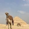 -Egypt- エジプト Pyramids ピラミッド