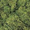 ミニNゲージレイアウト作成記12 草生えと小物の配置