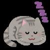 猫は天才イリュージョニスト?猫が寝場所をコロコロ変える理由は?