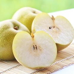 第4回 オーストラリア――Japanese Nashi Pears【世界の通訳事情】