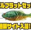 【一誠】チョン掛け仕様のギル型ワーム「ギルフラットセット」通販サイト入荷!