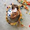 2歳10ヶ月  長女の成長記録