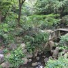 新宿・駒場東大前・センター南