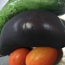 料理好き人間が書くブログ