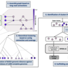 メタゲノムのハイブリッドアセンブリツール OPERA-MS