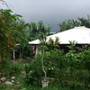 ちょっと道草 210305  写真で Go to西表島(6 古民家民宿 森の病院