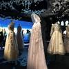 豊臣祐聖(トヨトミ ユウセー)の大阪めぐりっ!! Dior(ディオール)展へ