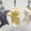 2月22日は「猫の日」!猫をモチーフにしたアイテムをご紹介します