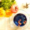 美しいブルーで目ヂカラUP♪ タイのバタフライピーは楽しみ方いろいろ