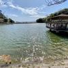 愛宕山公園 水鳥の池(島根県出雲)
