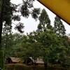 雨キャンプの後はテントもタープも干しましょう