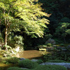 庭園6 南禅寺別院 南禅院庭園 南禅寺発祥の地