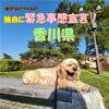 2020年4月14日:香川県緊急事態宣言(新型コロナウイルス)