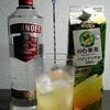 【カクテルレシピ】 自宅でカクテル 148杯目 「ウォッカ・パイナップル」