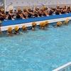 水泳の授業 5年:キャンプファイヤーの歌練習