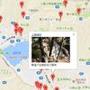 固定ページ機能でgooglemapを使った観光マップを作ってみた