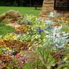 エントランスサインの花たち