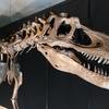 うんちの化石の話