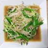 【1人暮らしの夕食】たっぷり野菜の豚バラオイスター炒め『レシピ』