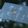 日本の面影 東洋の第一日目 小泉八雲