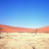 南アフリカ〜ナミビア(6):7日間オーバーランドツアー振り返り ナミビア旅のハイライト!Dune 45の日の出&デッドフレイ編