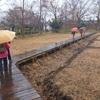立川市・矢川緑地と根川緑道を歩く