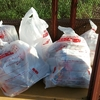 ゴミ問題・昨日回収してきたゴミを仕分けてみたよ~