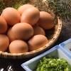生卵と納豆の組み合わせが良くないと知り、食生活を考え直したあの日