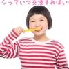 歯ブラシの交換の時期は?