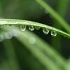 4月20日は穀雨★おまじない