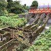 天池の瓢箪池(富山県南砺)