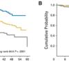 FLIPI2:濾胞性リンパ腫の予後指標